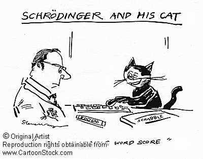 薛定谔之猫的图片_薛定谔,薛定谔方程壁纸图片
