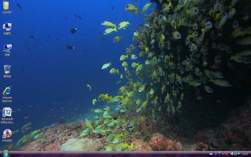 热带鱼屏保 热带鱼屏保的音乐 热带鱼屏保 官网图片