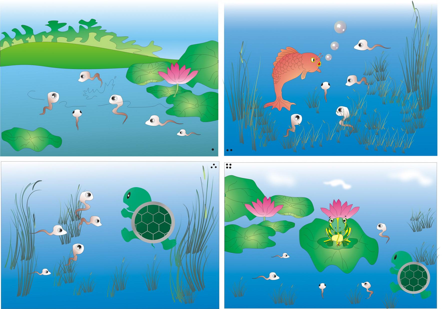 小蝌蚪变青蛙大全图片内容小蝌蚪变青蛙大全图片图片