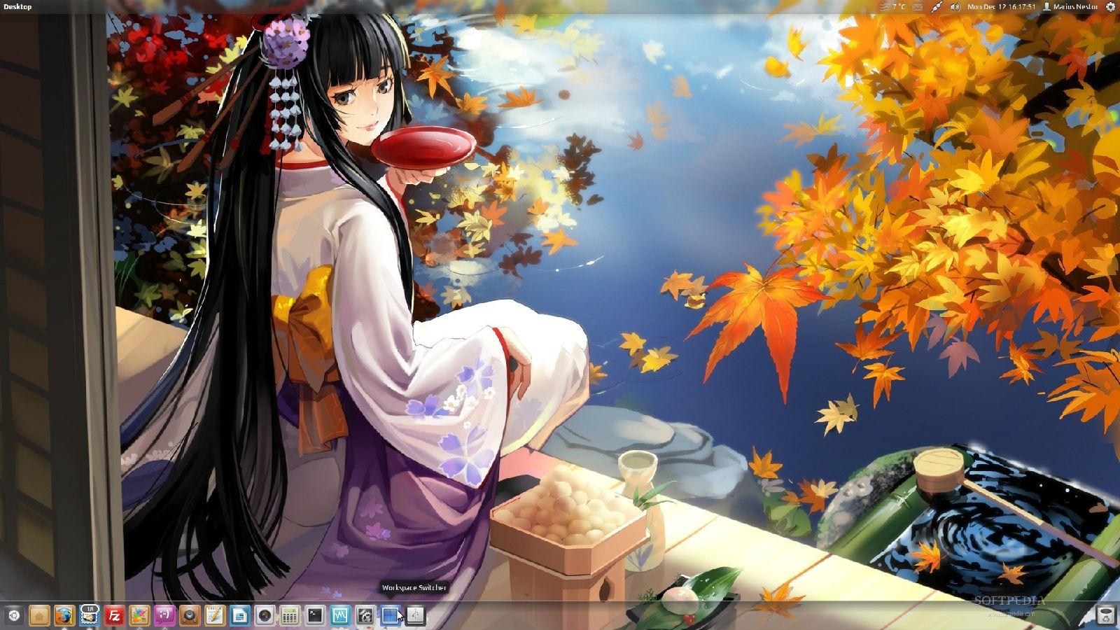 ubuntu11.10桌面定制,主题安装,unity默认dock位置设为底部
