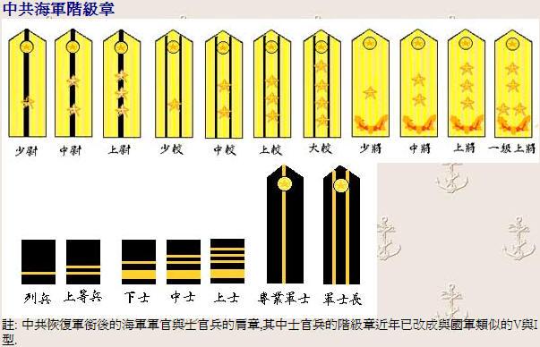 军衔标志 中国将军军衔肩章 中国将军军衔肩章