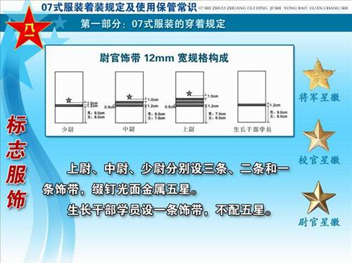 07式新军装揭密之军衔标志 胸标 臂章图片