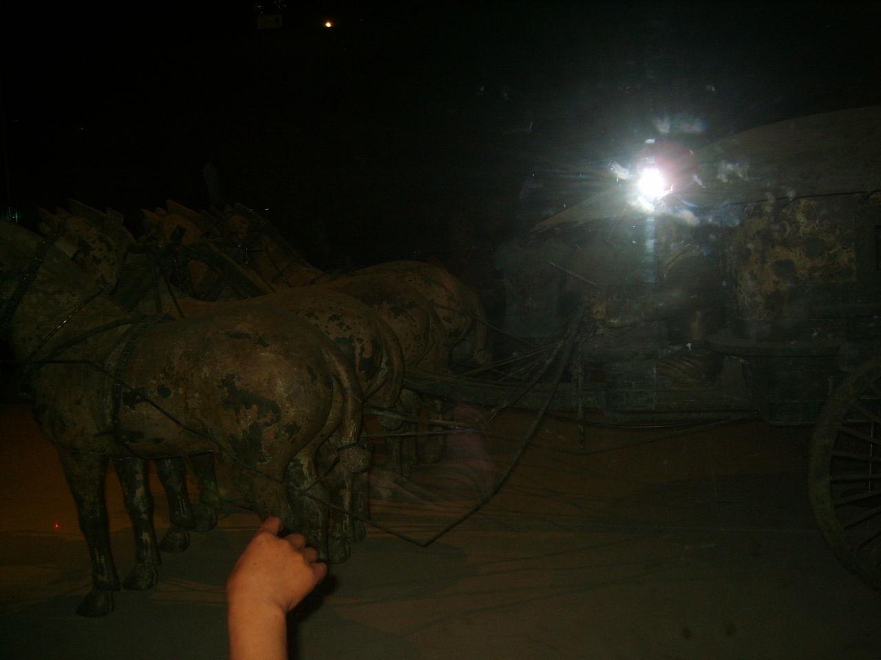 901388535_世界上独一无二的铜马车 可惜馆内灯光太暗 同买 ...