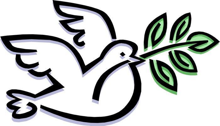 鸽子笔记v鸽子蜗牛100字图片