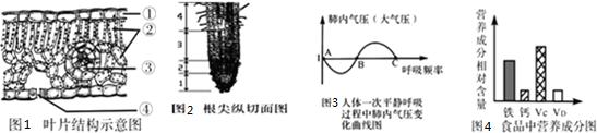在一个标准大气压下,肺内气压变化处于图3曲线中ab段图片