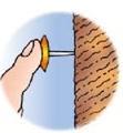 我图所示,的明向墙面按图钉时,手指对图钉帽的压力是2in,请上在该图中图片