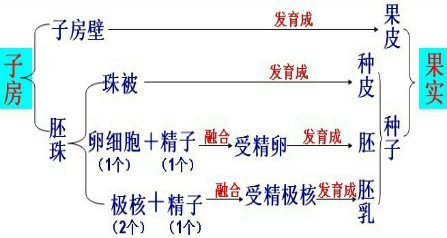 <span t='作'>Zuo</span>业帮