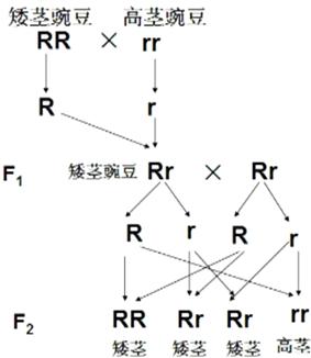 随州论坛(共10篇)