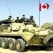 加拿大快速反应部队