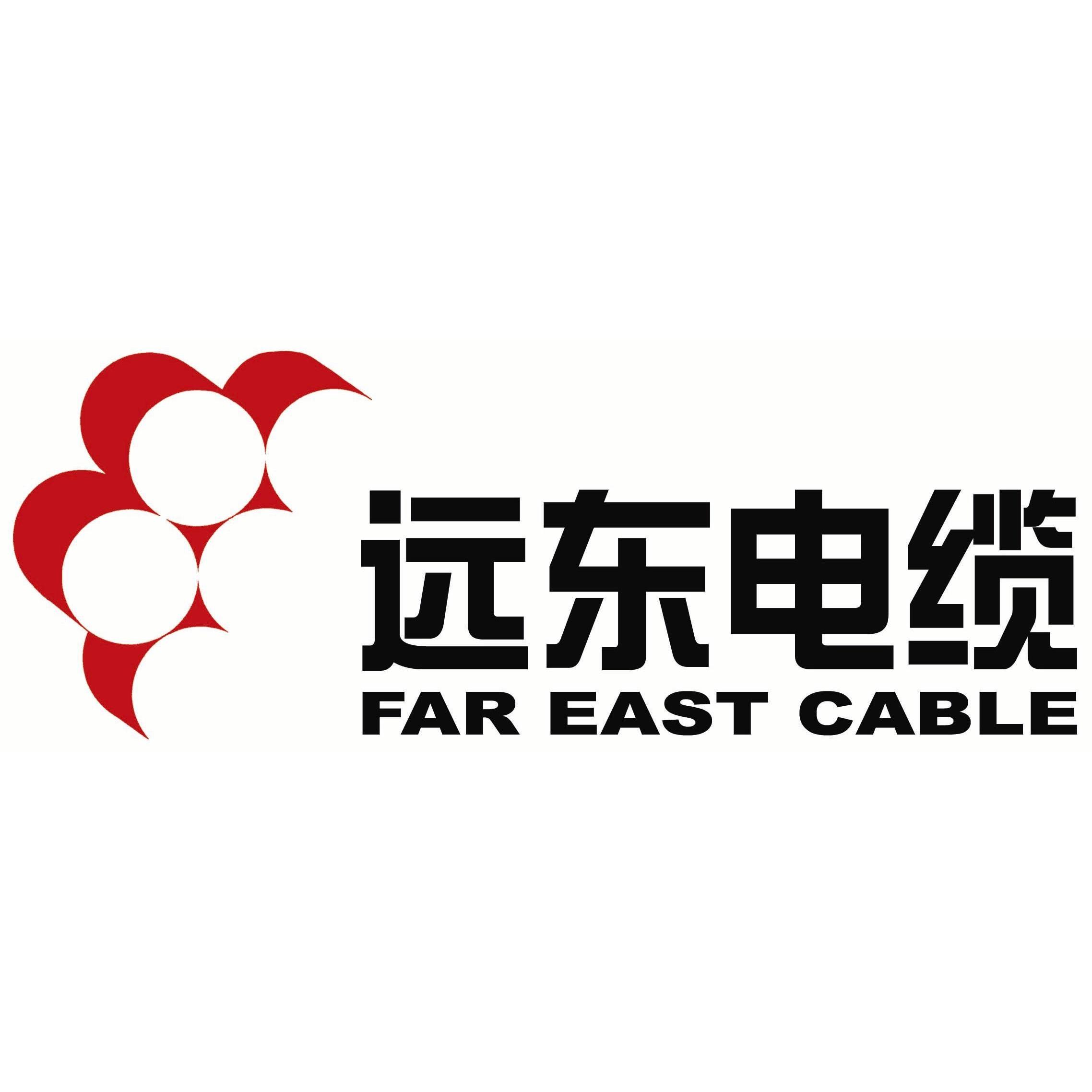 远东电线电缆bv4平方_远东电线电缆bv2.5_远图片