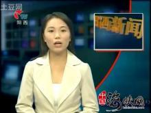 阳江阳西电视台王焱楠_电视台_分类_百度百科