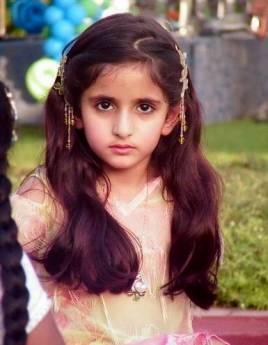迪拜皇室莎拉公主_迪拜公主 _百度百科