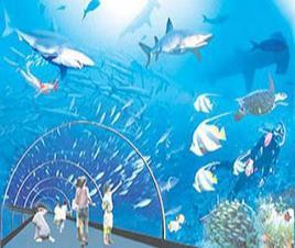 武汉海洋世界图片_武汉海洋世界_百度百科