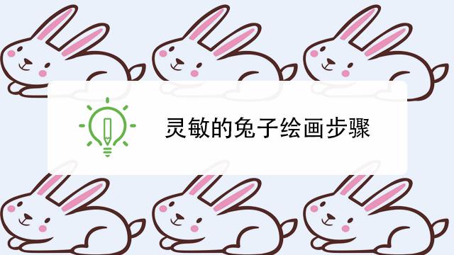 qq桌球游戏_怎样以正确的姿势抱兔子-百度经验