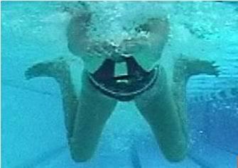 蛙泳腿部動作技術要領圖片