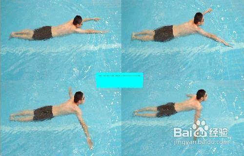 蛙泳運作要領及技巧圖片