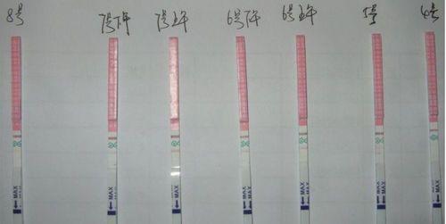排卵试纸什么时候用_怀孕用晨尿测比较准吗-用的不是晨尿验孕准吗_为什么晨尿测试 ...