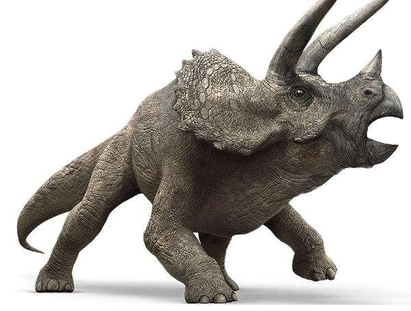 准角龙_《侏罗纪世界》23种恐龙百科图鉴 -百家号