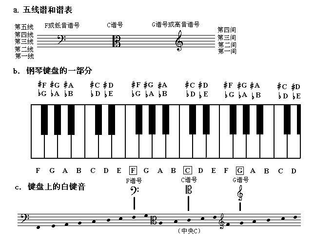 (钢琴谱怎么看)