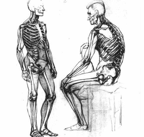 背部身体结构_首页_百度空间