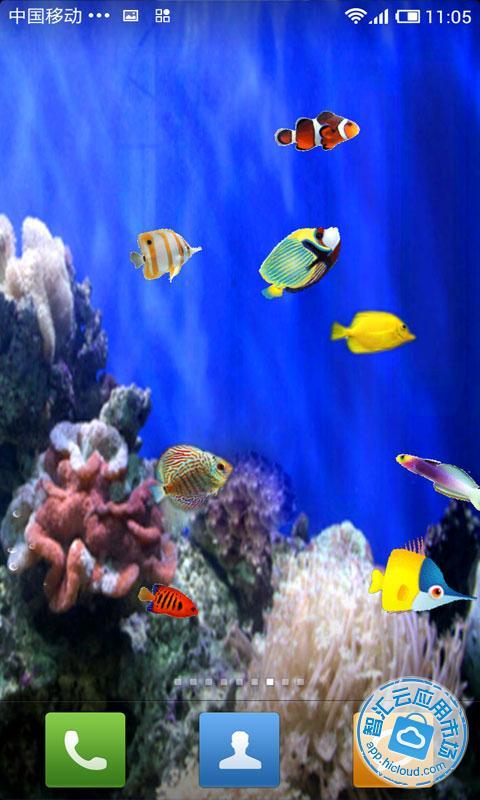 会游动的鱼壁纸_电脑桌面海洋鱼壁纸图片