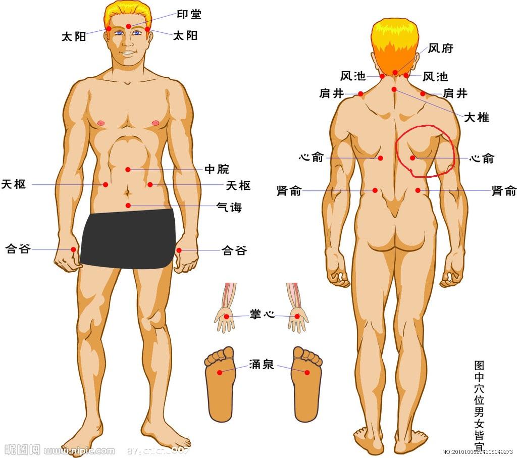 人体肉照_左边腰上靠背面离肾下面一点的地方起了一个类似小球的东西,在肉里面