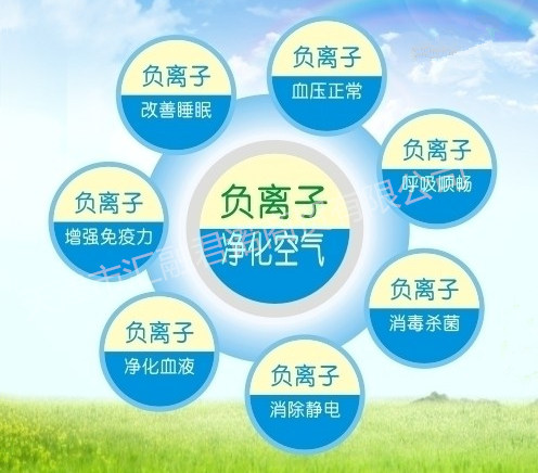 堹i?[Zh~y?N?????Y??&_负离子能够使生物体容易摄取维他命頪,氨基酸,矿物质等,这些成分能够