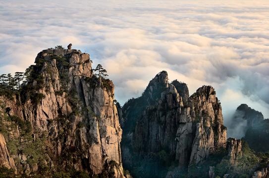 黄山怪石云海温泉_黄山四绝是指奇松、怪石、云海、温泉 。因为_百度知道