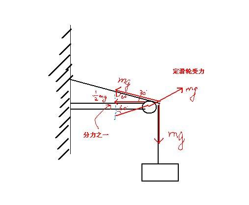 定滑轮和动滑轮_动滑轮物体受力分析_完美作业网_www.wanmeila.com