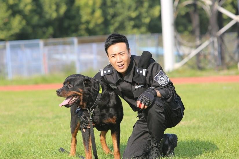 警花唐��b_电视剧《警花与警犬》全集的背景和内容是什么?