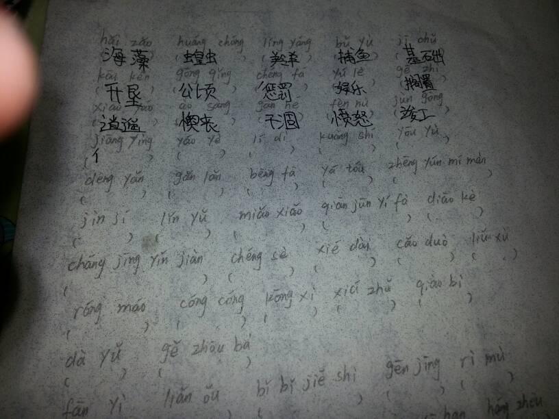 第一題看拼音寫詞語的答案圖片