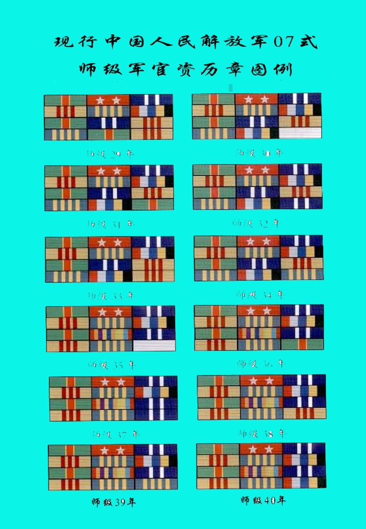 中国人民解放军胸章代表什么军衔?_百度知道