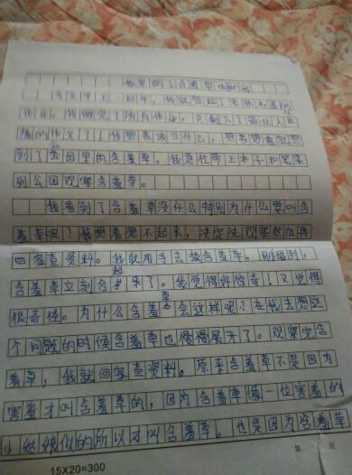 初中生一句話適合日記20字要20篇電腦總結初中生的圖片