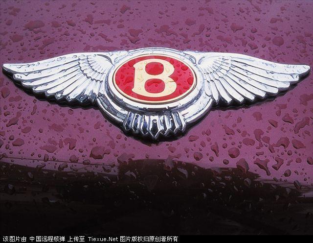 带r标志的是什么车_车标 汽车屁股后面有个 大大的翅膀 是什么车的车标_百度知道