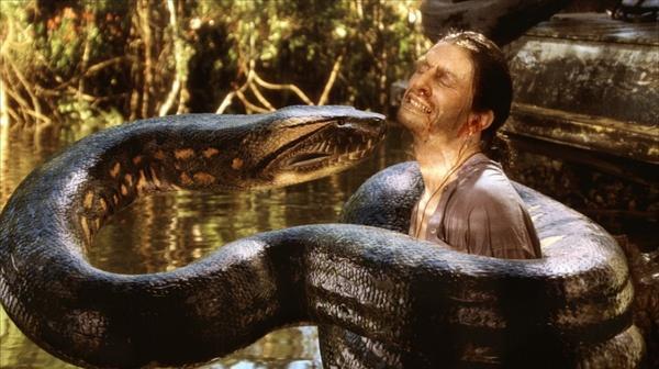大蛇吃人事件_一部外国电影 把蟒蛇放到桌上割开肚子里面有好多活蛇的 然后人就拿来