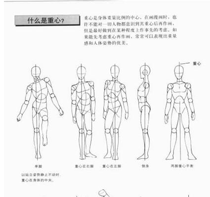 人体漫画版_漫画人物的衣服和身体怎么画好