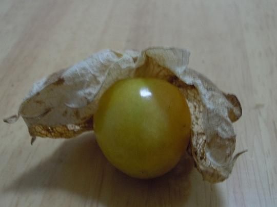花姑娘水果图片_这是什么水果,外面有一层薄薄的外皮,里面是黄色的果子,和 ...