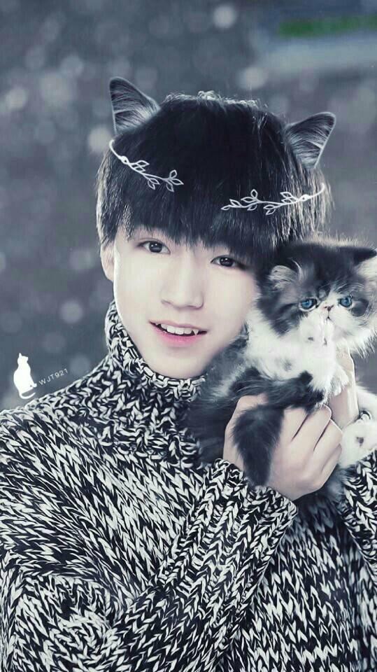 猫纹少年王俊凯_王俊凯喜欢什么_百度知道