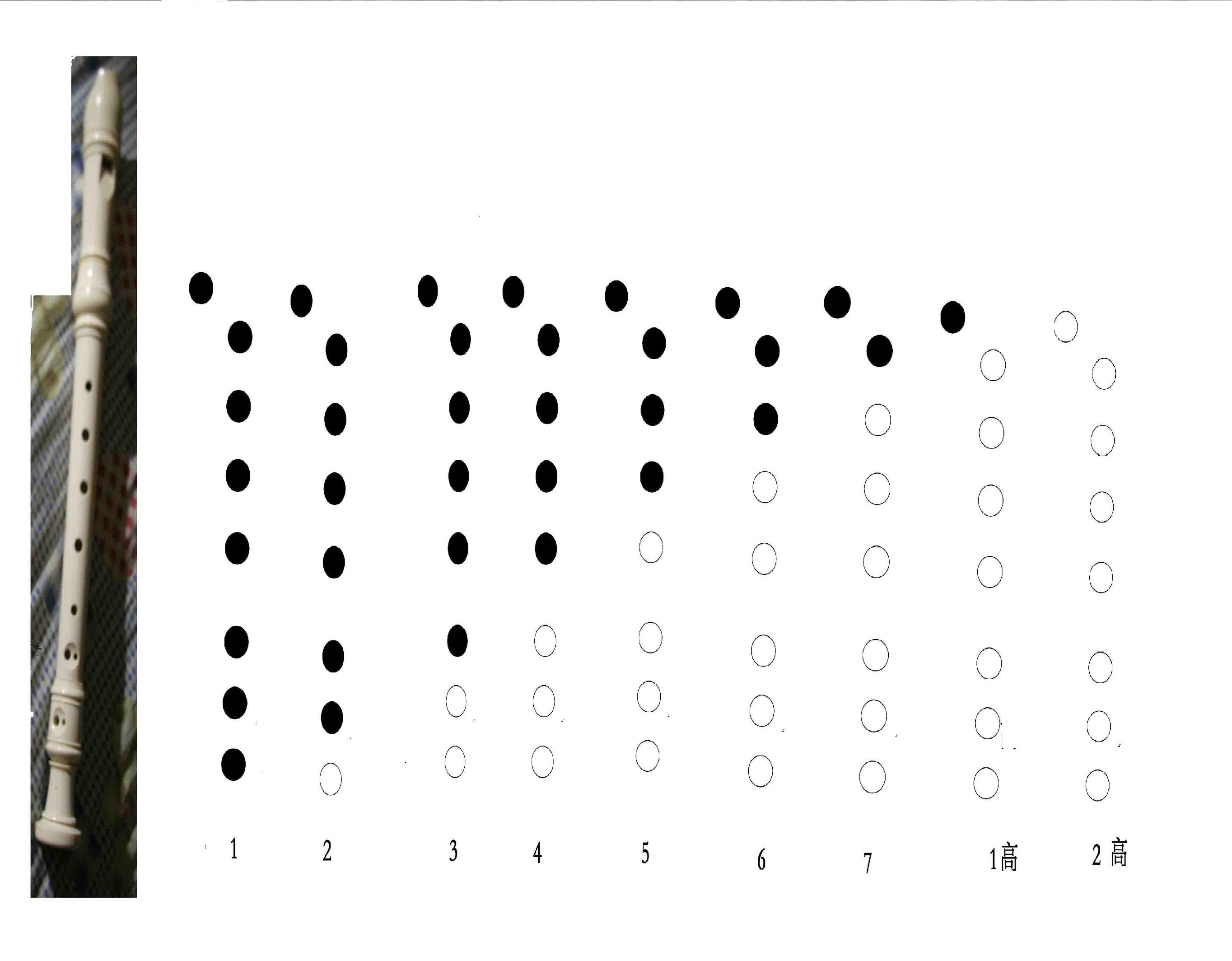 八孔竖笛小星星简谱-两只老虎竖笛谱-八孔竖笛小星星指法图-八孔竖笛指法小星星-八孔竖笛小星星教程-竖笛教学视频入门教程