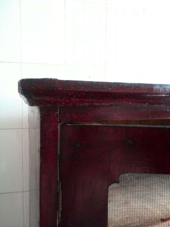 木質碗柜上很多白色的點,開始以為是灰,后來仔細一看全是會動的小蟲子圖片