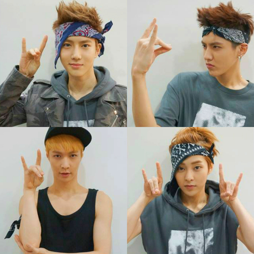 exo-m张艺兴lay微博_有木有哪位亲有EXO张艺兴lay的wolf手势图??_百度知道