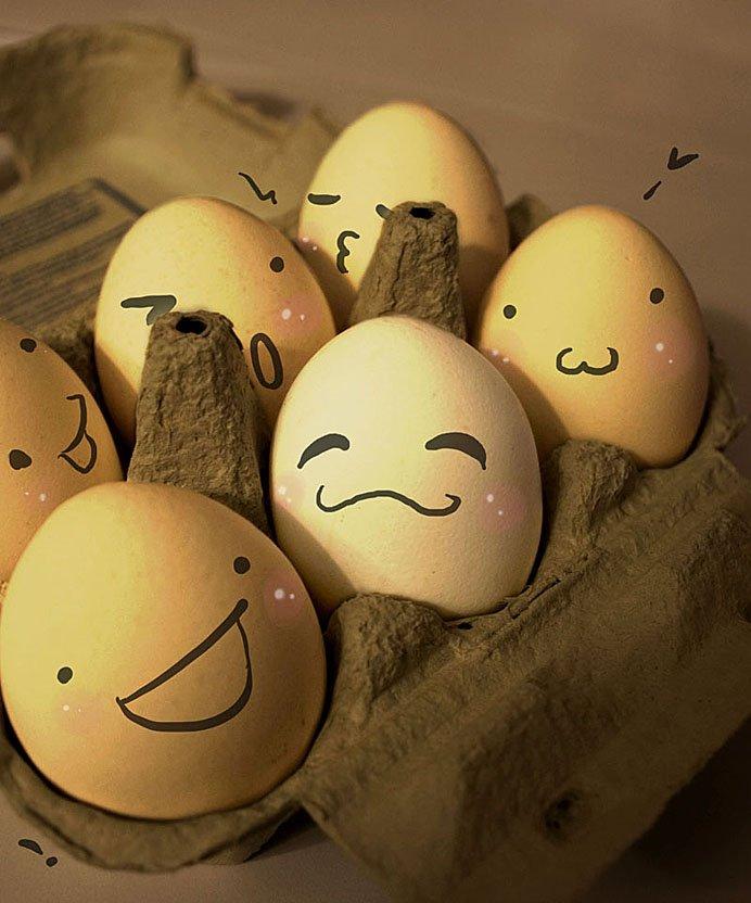 鸡蛋上画可爱表情_有关鸡蛋上的画表情的问题(跪求)_百度知道