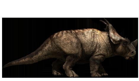 关于恐龙的纪录片_求一部有关恐龙的纪录片!急_百度知道