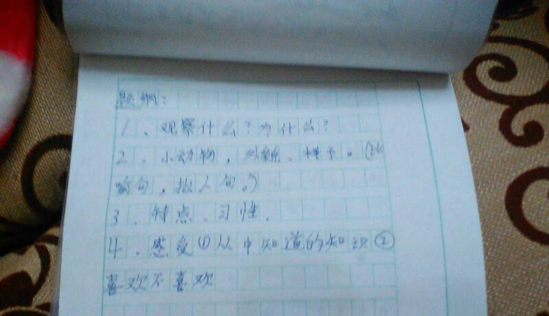 父妻养成日记_过年前打扫卫生的日记,不限字数.