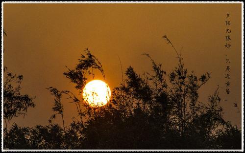 夕阳无限好歌词解析_夕阳无限好只是近黄昏的寓意是啥_百度知道
