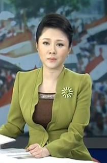 cctv13主持人紫凝_2013年7月5日 cctv13 新闻直播间的女主持人是谁?