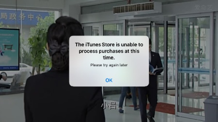 sesejj888_手机一直出现the itunes store isunable to process purchsese at th