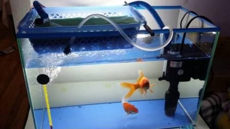自制鱼缸增氧器_鱼缸过滤器30W