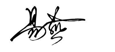 杨字的艺术写法_名字,易燕,,艺术签名