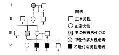 某家族有两种遗传病_下图为某家庭甲乙两种遗传病的系谱图_百度知道